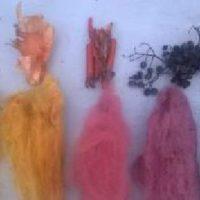 4 növényből -7 színű gyapjút festettünk-SzínesKert